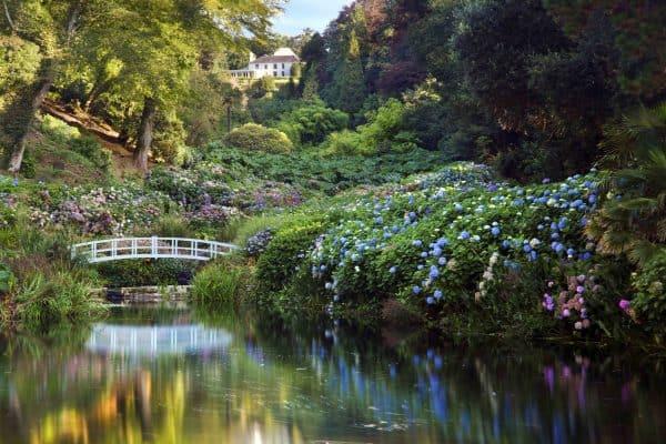Trebah Garden - Case study